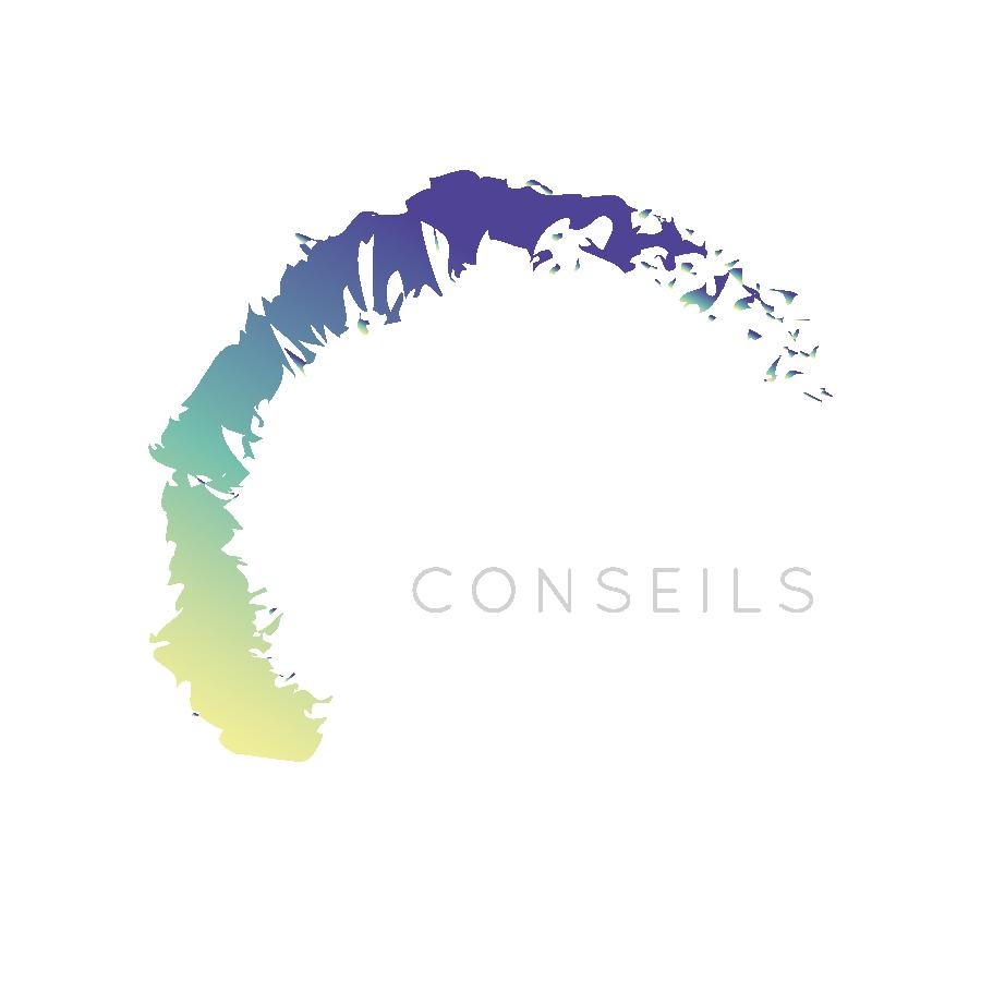 Logo MAGECO CONSEILS Management commercial et du Bonheur à la Réunion